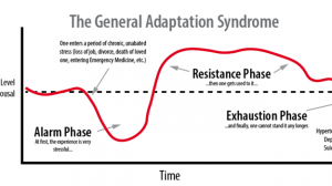 General adaptation syndrome: